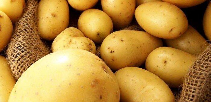 Украина увеличила экспорт картофеля в 2 раза, – Минагрополитики