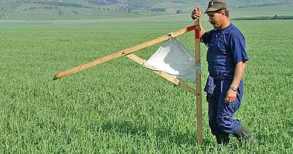 Весной рассмотрят закон об обороте земель с/х назначения?