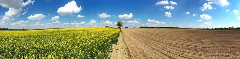 сельхозкооператив