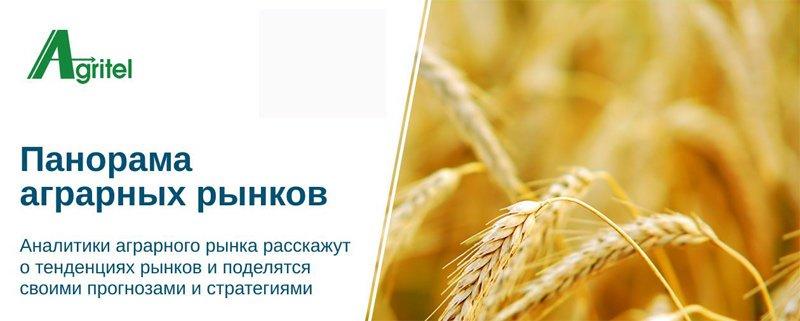 Панорама аграрных рынков