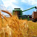 Продам сельхозпредприятие в Черкасской области — 1700 га.