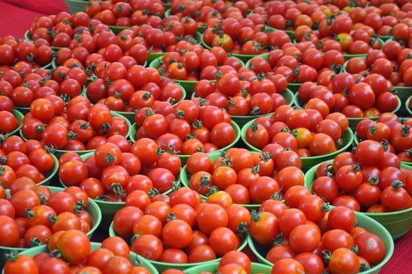 Украина сократила экспорт томатов, импорт — нарастила