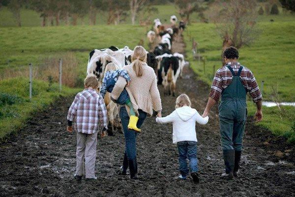 «Фермерский миллиард» перераспределят