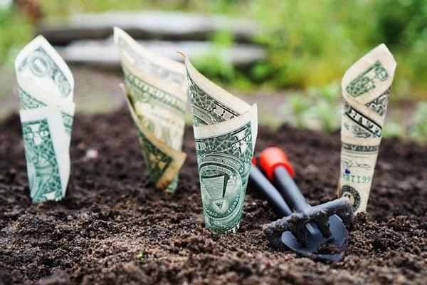 На дотации аграриям заложили 6,9 млрд грн