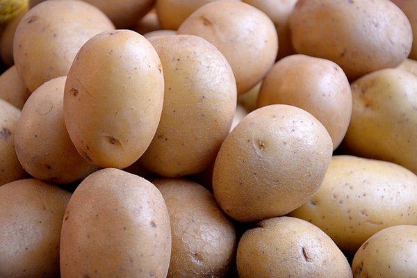 Увеличился экспорт позднего картофеля