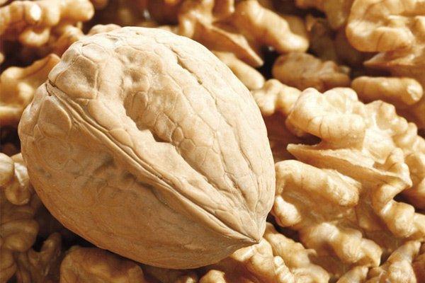 Вырос экспорт грецкого ореха