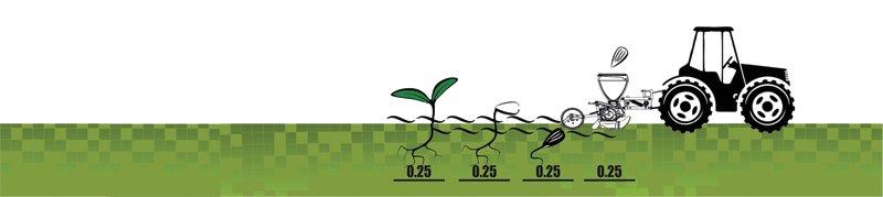 www.seeding.com.ua (098) 000-10-50, (050) 324-10-50, (0552) 31-61-78