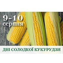 Дні солодкої кукурудзи