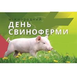 Міжнародний День Свиноферми