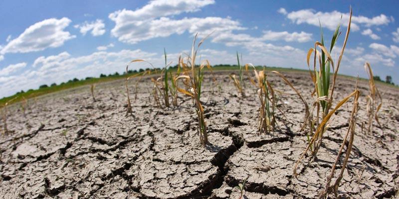 кліматичних змін