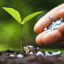Точне ґрунтознавство та управління зональністю полів
