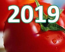 Овочі та фрукти України-2019