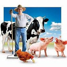 Ефективні інструменти маркетингу в тваринництві в умовах перенасичення ринку товарами та інформацією