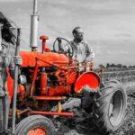 фермерів