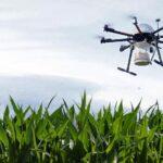 Внесение трихограммы дельталетами самолетами беспилотниками мультикоптерами
